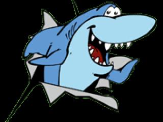 Lachende haai
