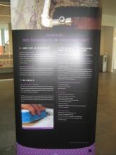 Actieweek Gezond Binnen Inspirerend Voorbeeld Torhout - Tentoonstellingsbanner Schimmel