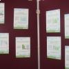 Actieweek Gezond Binnen Inspirerend Voorbeeld Torhout - Pancartes 1